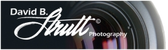 David B. Strutt Photography